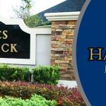 Eagles Hammock Header Image1