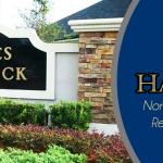 Eagles Hammock Jacksonville